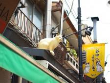 猫で有名な商店街。いたるところに猫のオブジェが。